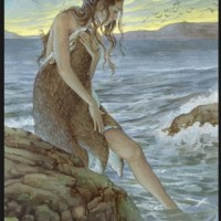 Selkies #FolkloreThursday