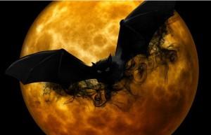 bat pic 1