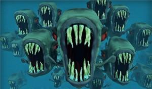 danger nightmare fish