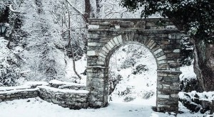 snow arch forest