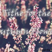 Tithe for the Autumn Flowers #ShortStory